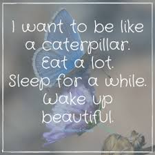 Insomnia Meme - 16 hilarious can t sleep quotes and sayings only insomniacs will