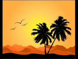 palm trees design and silhouettes