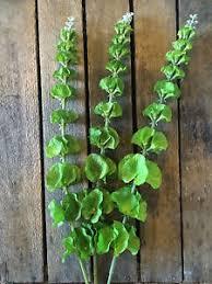 Bells Of Ireland Flower 3 Faux Silk Artificial Green Bells Of Ireland Realistic Greenery