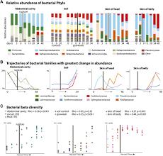microbial clock accurate estimate postmortem