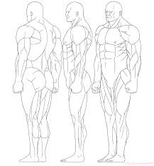 Full Body Muscle Anatomy Http Anatoref Com Post 145610765211 Whole Body Skeleton
