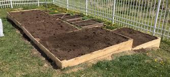 Cedar Dog Bed Building Cheap Raised Garden Beds Path To Kitchen Garden