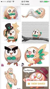 All Memes Names - introducing rowlet the most vicious pok礬mon ever pok礬mon amino