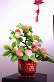Chinese New Year Home Decoration 554 Best Chinese New Year Images On Pinterest Chinese New Years