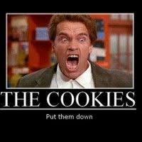 Schwarzenegger Meme - watch what wednesdays girls impersonate arnold schwarzenegger very