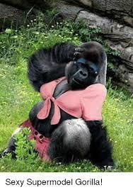 Funny Gorilla Meme - sexy supermodel gorilla funny meme on me me