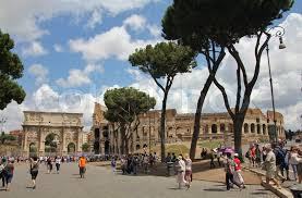 pine trees arch of constantine and colosseum roma rome rom