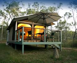 zoofari the ultimate australia wildlife safari experience find