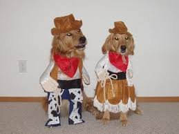 Cowboy Dog Costume Halloween Doggy Cowboy Costumes Cowboy Costumes