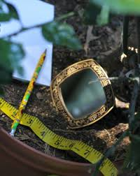 using mirrors in the garden measuring light reflection science