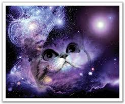 cool fun and unique space gifts for adults xpressionportal jp london pos2252 ustrip peel and stick removable wall decal sticker mural space cat galaxy nebula