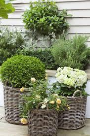 design garden ideas home gardening for small gardens zandalus net