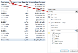 How To Do A Pivot Table In Excel 2013 Comparing Slicers In Excel 2010 To Standard Pivottable Filters