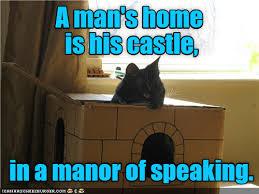 Talking Cat Meme - home sweet home lolcats lol cat memes funny cats funny cat