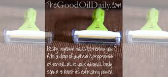 essential oil for ingrown hair natural help for ingrown hairs quick tip thursday the good oil