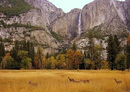 the ahwahnee hotel in yosemite valley a great american s