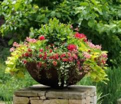 Indoor Garden Containers - 118 best container gardens inspiration images on pinterest