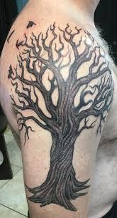 twisty tree oak tree cool oak tree