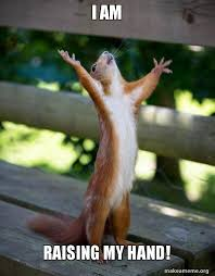 Raising Hand Meme - i am raising my hand happy squirrel make a meme
