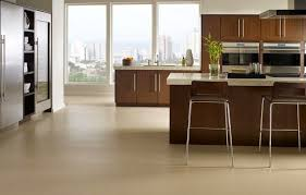 Cork Kitchen Floor - kitchen floor materials home design