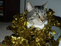 polka dotty place irish christmas tree