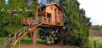 treehouse resort and spa