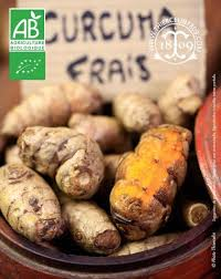 comment utiliser le curcuma en poudre en cuisine curcuma frais bio bienfaits recette achat propriétés anti cancer