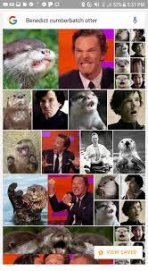 Benedict Cumberbatch Otter Meme - 25 best memes about benedict cumberbatch otter benedict