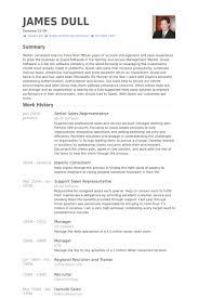 Jewelry Sales Resume Examples by Senior Sales Representative Resume Samples Visualcv Resume