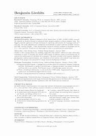 Example Of A Profile In A Resume Benjamin Livshits U0027 Resume
