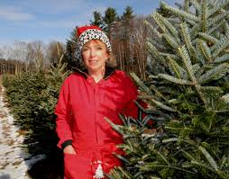 christmas tree farm is a family affair the daily gazette
