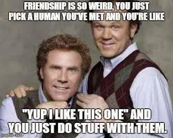 Funny Weird Memes - friendship is so weird you just pick a human you ve met and you re
