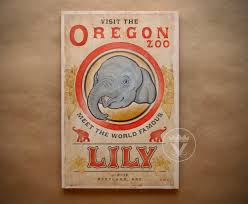 the famous lily wood print asian elephant visit oregon zoo