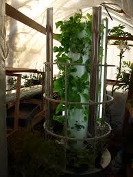 greenhouse backyard tower garden