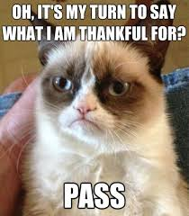 Say What Meme - 14 thanksgiving memes to help you survive the holiday with your family