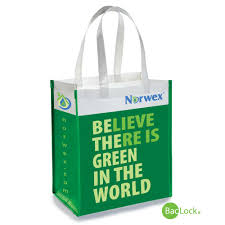 norwex reusable grocery bag go green save money