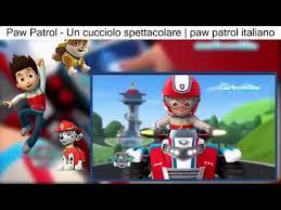 paw patrol cucciolo spettacolare paw patrol italiano