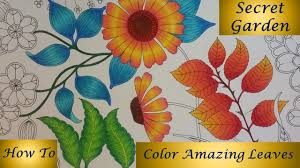 how to color amazing leaves secret garden coloring book youtube