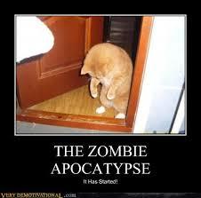 Funny Zombie Memes - zombie apocatypse evan s blog