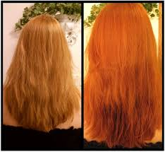 esalon hair color reviews with pictures tinted love hair color before and after gallery before and after
