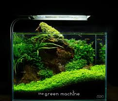 Aquascape Store Red Rock Nano Aquascape By James Findley Youtube