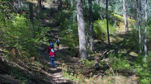 mt lemmon hiking trails map mount lemmon ski valley becoming is superior to being