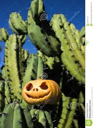 halloween scary background green halloween scary pumpkin on the cactuses backgroung stock photo