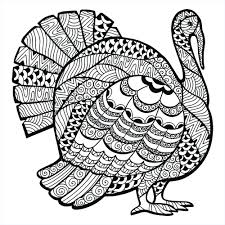 turkey bird thanksgiving coloring pages free printable feather
