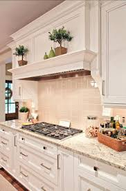 Kitchen Vent Hood Designs by Kitchen Vent Hood Designs Kitchen Vent Hood Designs Amazing