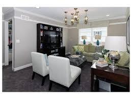 Living Room Bonus - phenomenal ideas for living rooms living room linear fireplace