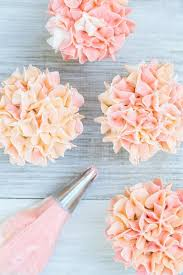 best 25 cupcakes decorating ideas on pinterest frosting flowers