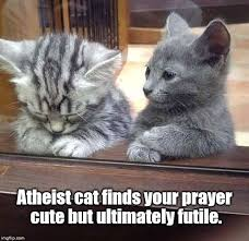 Prayer Meme - atheist cat imgflip