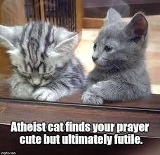 Praying Memes - atheist cat imgflip