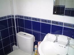 Border Bathroom Tiles Blue Border Tiles For Bathrooms